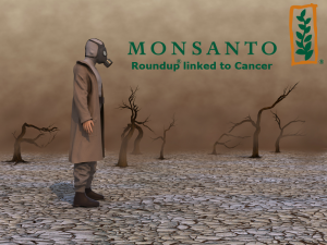 Monsanto Roundup Cancer