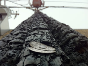 wildfire burned utility pole